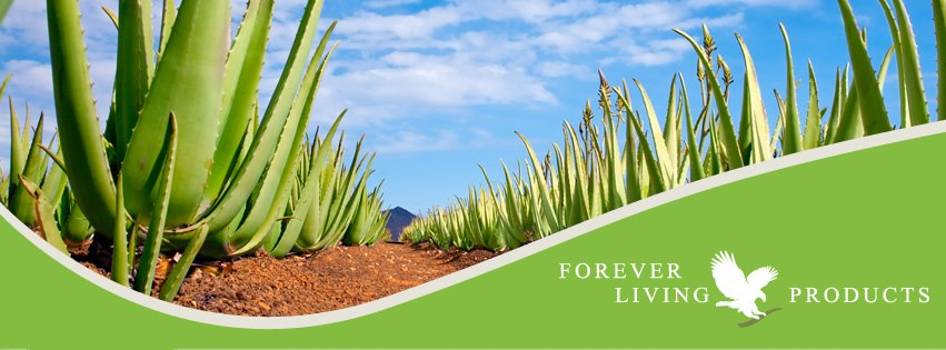 NAPOJE ALOESOWE FOREVER LIVING PRODUCTS SKLEP